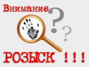Профессиональный розыск людей на территории России